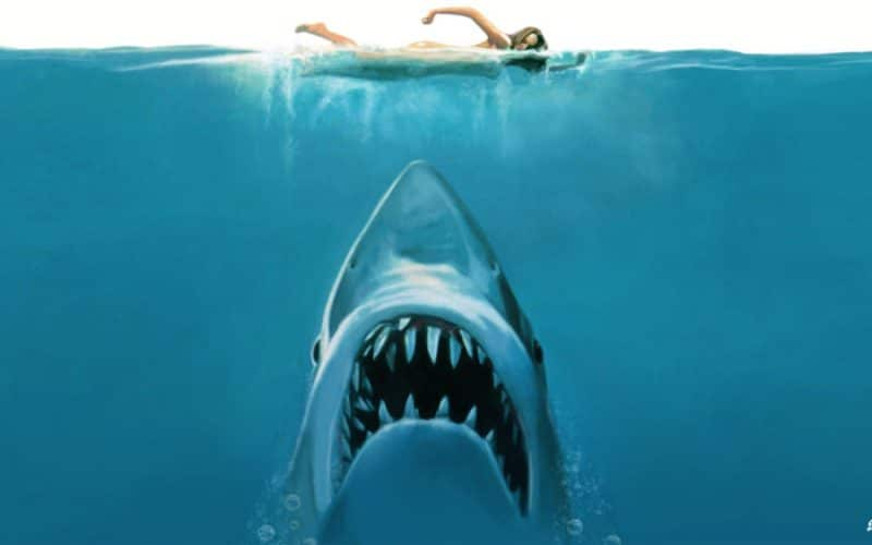 jaws best horror streaming netflix