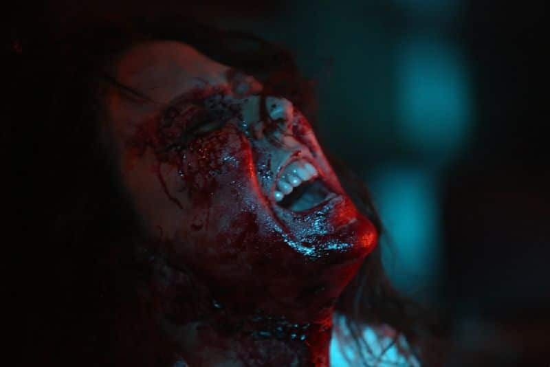 [TRAILER] HOUSEWIFE, New Horror from BASKIN Director Cam Evernol