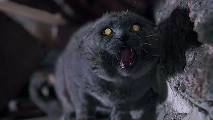 1989's PET SEMATARY to Rise Again; Restoration in the Works!