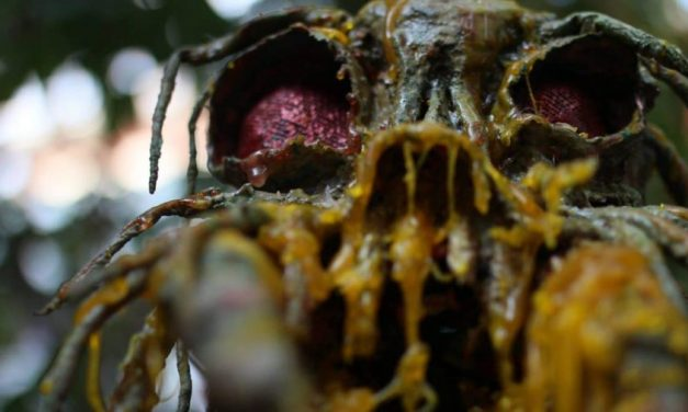 [Exclusive] An Interview with the makers of gore-short TERMITATOR