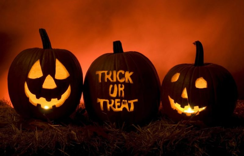 halloween pumpkins trick or treat