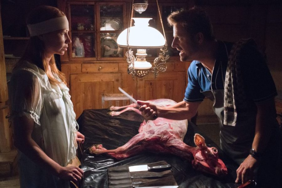 [Cinepocalypse 2017 Review]: ANIMALS is a Tantalizing Puzzle Film