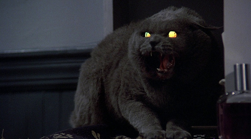 PET SEMATARY Remake to Shoot in May?
