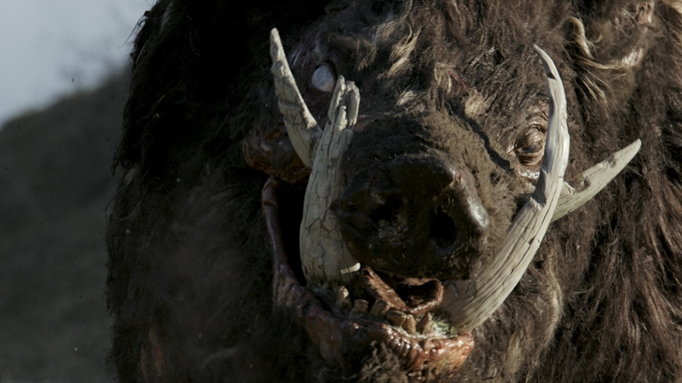 [Review] Shudder Welcomes Home The Grand Goriness of Creature-Feature BOAR