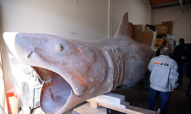 'Bruce' The Shark From JAWS To Be Restored by WALKING DEAD FX Master Greg Nicotero