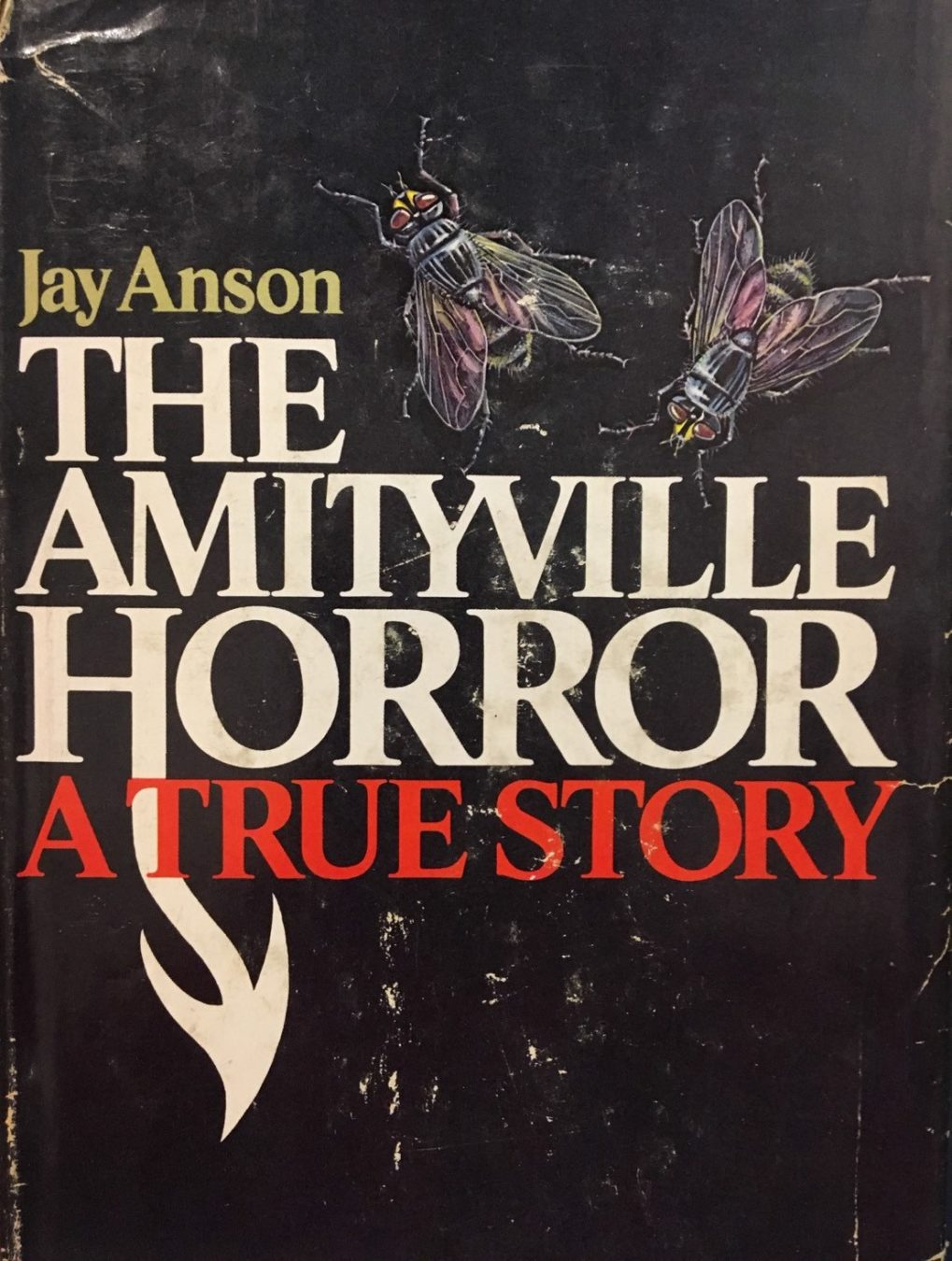 the amityville horror jay anson