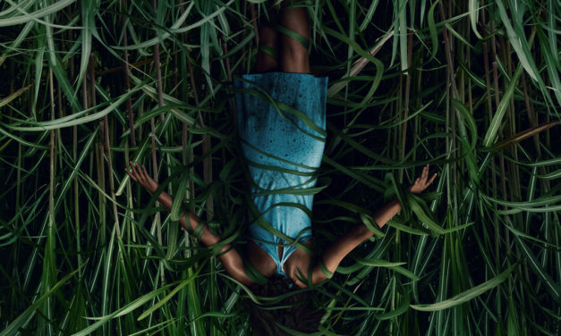 "[Fantastic Fest 2019 Review] IN THE TALL GRASS Adapts Stephen King & Joe Hill's Novella into A Quick, Clean ""Netflix Movie"""