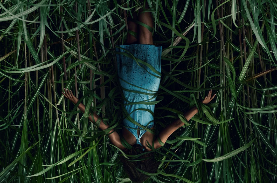 """[Fantastic Fest 2019 Review] IN THE TALL GRASS Adapts Stephen King & Joe Hill's Novella into A Quick, Clean """"Netflix Movie"""""""