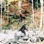 Talking Bigfoot & The Mysterious Patterson-Gimlin Film with Scott Philbrook & Forrest Burgess
