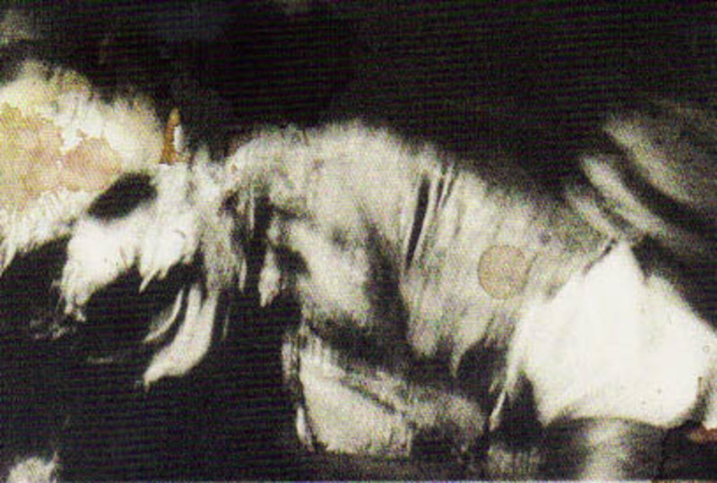 Layers of Leatherface: Dissecting The Texas Chainsaw Mascot – Part Two