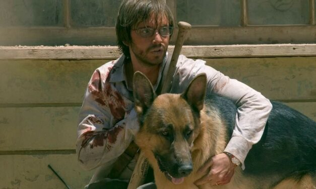 And Your Little Dog, Too! Horror's 10 Best Final Dogs