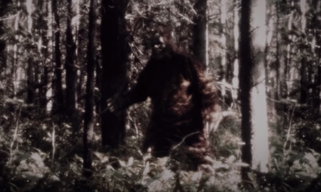 [Review] Duplass Brothers' True Crime Doc SASQUATCH is Way More than Squatchsploitation